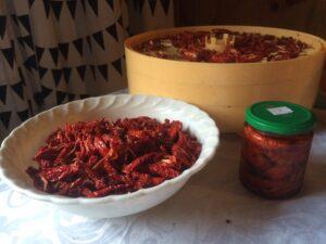 Фото Вяленые помидоры. Как приготовить.