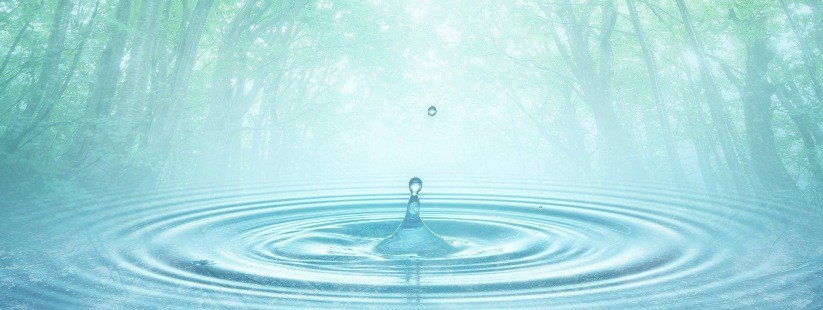 Вода — основа жизни на Земле
