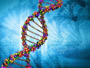 Фото ДНК